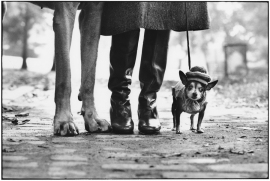Elliott Erwitt, New York City 1974