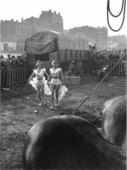 Willy Ronis - Le Zoo, Circus Achille